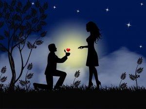 היתרונות של הצעת נישואין בבקתת עץ
